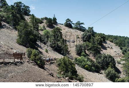 Unrecognized people hiking on a nature trail at the of the hill at Troodos mountain range in Cyprus