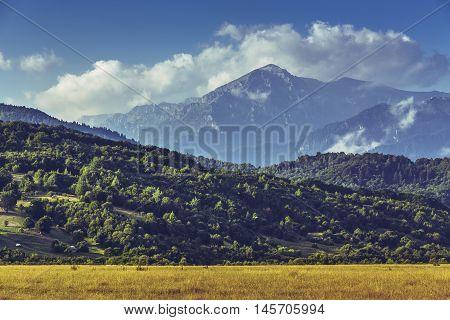 Scenic morning landscape with ripe cultivated field and majestic Bucegi massif at the horizon in Transylvania region Romania.
