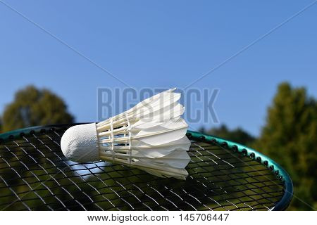 One shuttlecock and badminton racket outdoors on green trees