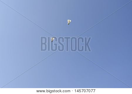 Two badminton balls flying in the blue sky