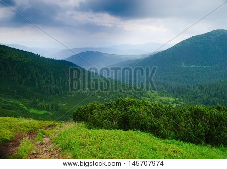Path on the mountains in nasty day