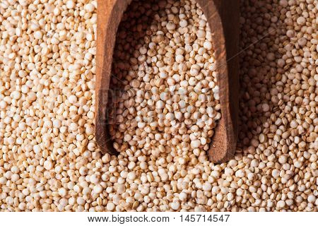 White quinoa seeds on a wooden spoons in a wooden bowl