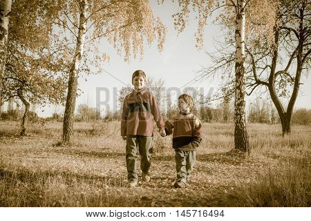 Two boys walking together on withered grass in autumn park, sepia toned image