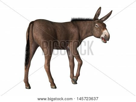 3D Rendering Donkey On White