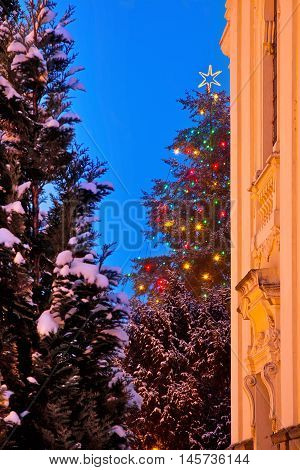 Detail of Christmas tree with old church in the winter