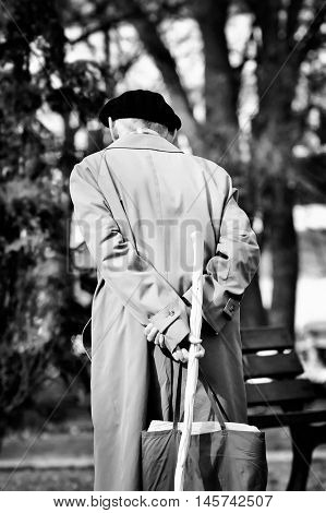 frailed senior walking in the park