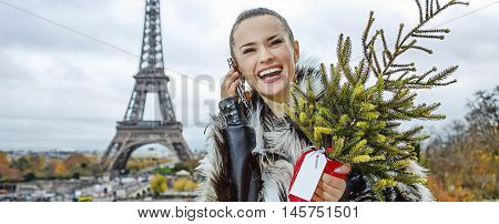 Woman With Christmas Tree In Paris, France Using Cell Phone