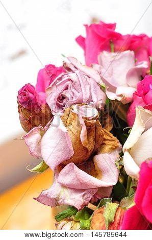 A bouqette of pink and purple dead roses