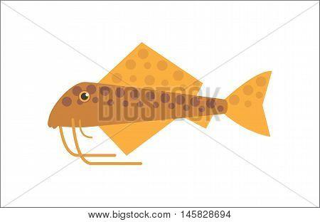Aquarium fish. Catfish flat illustration. The inhabitants of marine reef aquariums and ponds