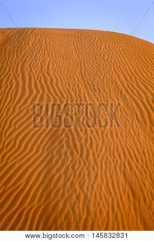 Ripples in the sand in the dunes of Dubai Desert Conservation Reserve, UAE