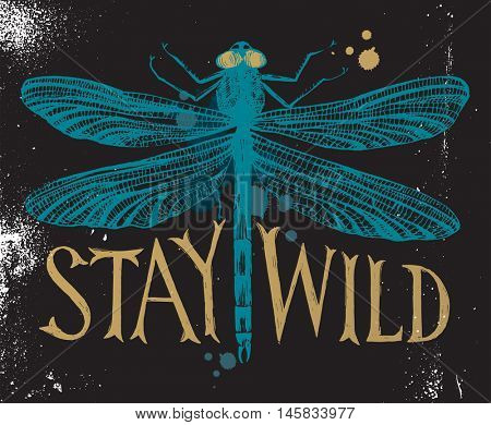 Background with dragonfly and hand drawn lettering - stay wild