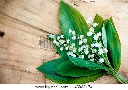 Beautiful lilies of the valley on vintage wooden background