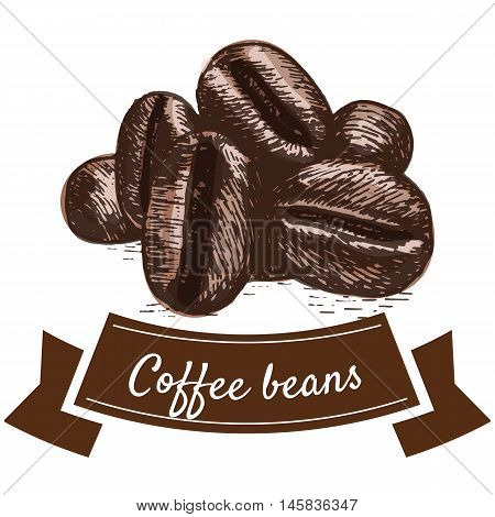 Vector illustration colorful set with coffee beans. Illustration of coffee beans on white background