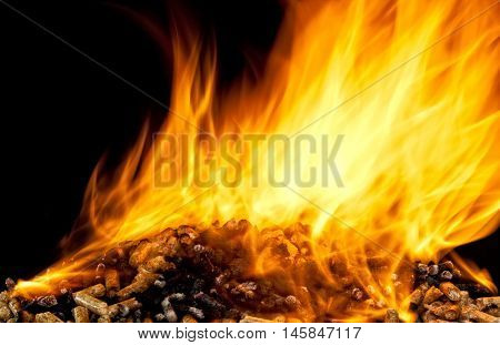 burning wood pellet with flame