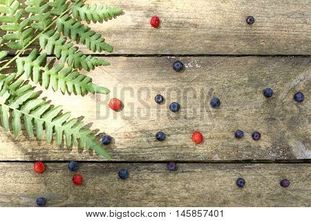 berries forest blueberries and strawberries with a sprig of fern on old wooden surface top view / wild berries and ferns