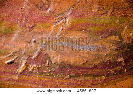 Rainbow oil slick on the sand with bird steps. Textured background. Pollution of environment water and ground concept.