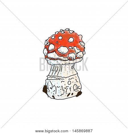 Vector illustration of amanita muscaria poisonus mushroom