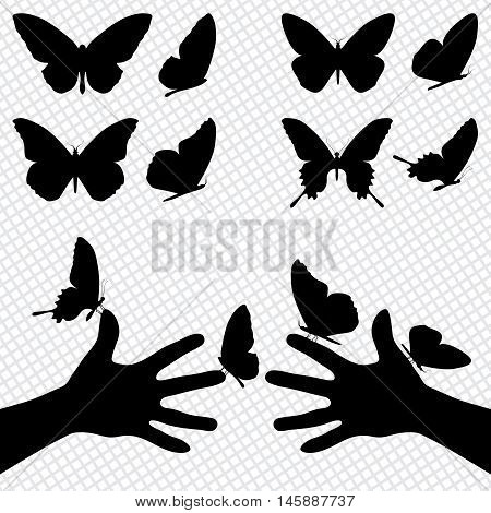 Collection Silhouettes Of A Butterflies. Sitting On The Hands