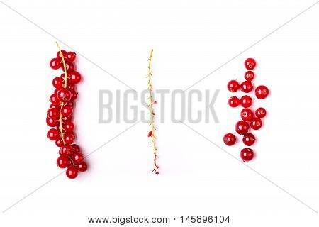 Detail Bunch Of Red Currants With A Stem On A White Background
