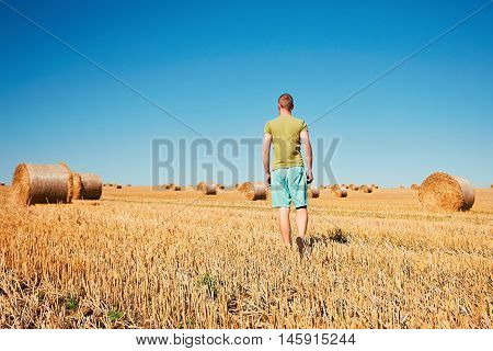 Cornfield After Harvest