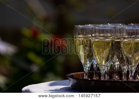 Champagne Sparkling Cider Alcohol Drink Tray Outdoors Reception