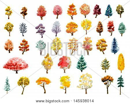 watercolor hand painted autumn trees set on whtie