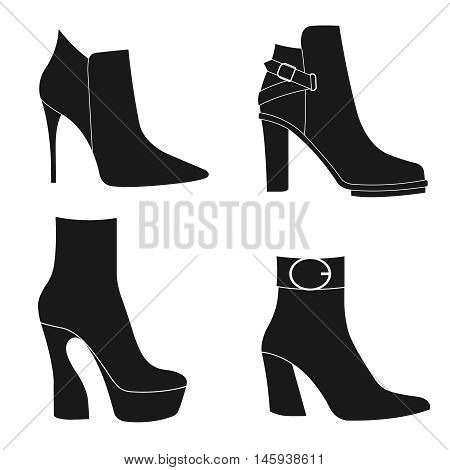 Vector illustration of a women`s ankle boots. Fashion collection of women`s ankle boots.