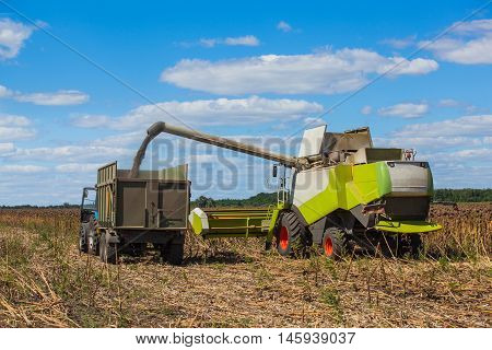 Combine harvester overloads sunflower seeds in a tractor trailer on the field during the autumn harvest.