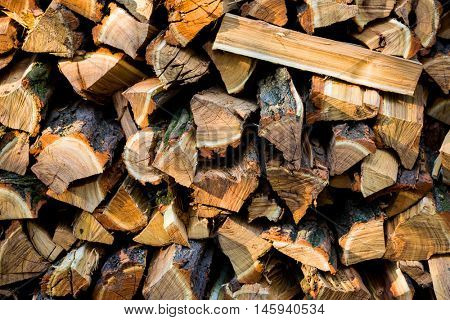 abstract natural background with firewoods