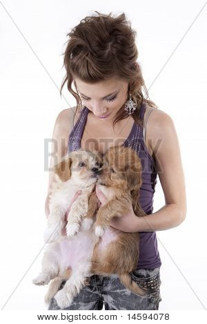 Teenage Girl With Puppies