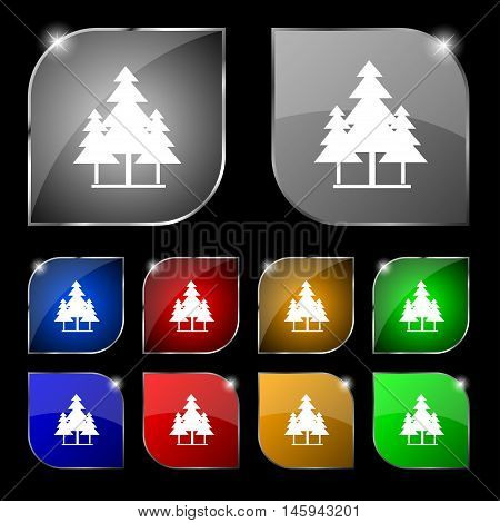 Christmas Tree Icon Sign. Set Of Ten Colorful Buttons With Glare. Vector