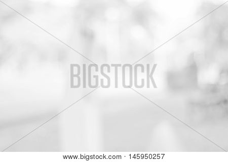 backdrop white bokeh blurred background. grey abstract background. soft backdrop of nature abstract background. used for wallpaper or background