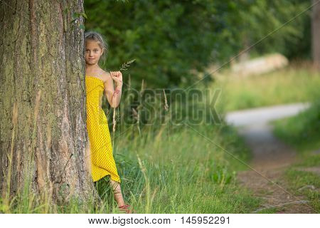 Little girl peeking from behind the pine trees in the Park.