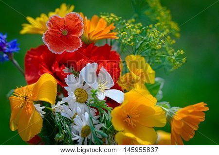Bouquet With Blossoming Flowers