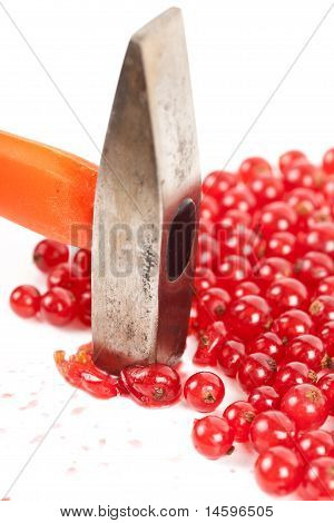 Red Currant Smashed With Hammer