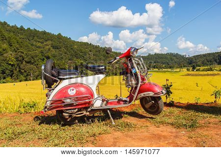 CHIANG MAI THAILAND - NOV 1 2014: Vespa parked along the road at green terraced rice field in Mae Klang Luang Mae Chaem Chiang Mai Thailand