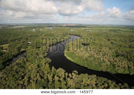 Wild Florida River