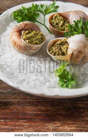 Large Escargots De Bourgogne - Snails Baked  Garlic Butter, With