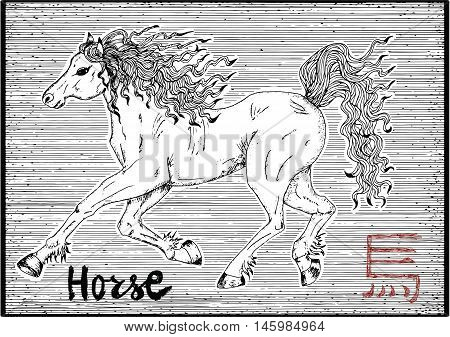 Engraved illustration of zodiac symbol with horse and lettering. Horoscope and astrological vector sign of asian new year calendar. Graphic line art with animal. Chinese hieroglyph means Horse