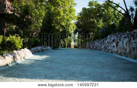 Stone Walkway. Alley In Beautiful Garden With Flowers And Trees Around. Summer In The Garden