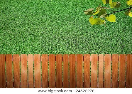 Fence Near The Grass