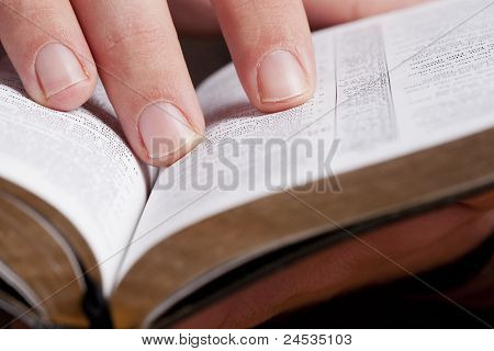 Reading Through The Bible