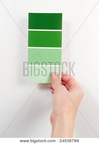 Green Paint Swatches