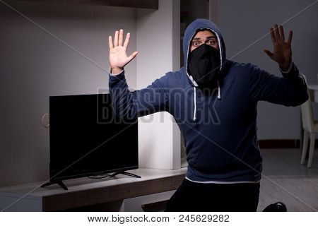 Burglar thief stealing tv from