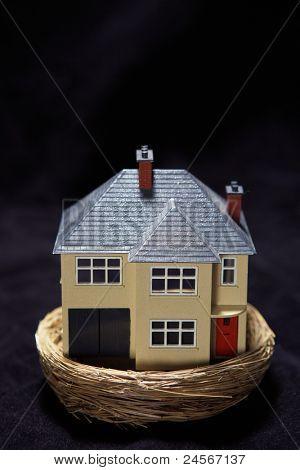 Model house in a basket