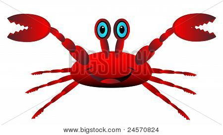 Red crab on white