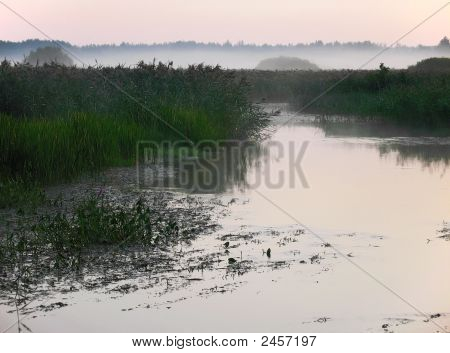 Sunrize, Mist, Bulrush