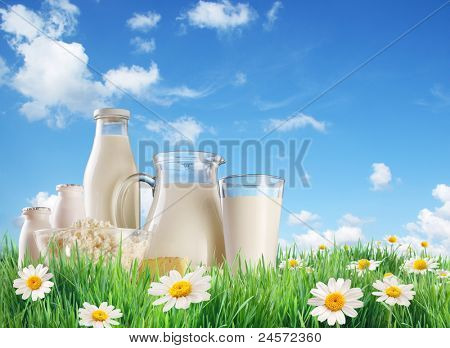 Dairy produce on the grass with chamomiles. On a background of the summer sky with clouds.