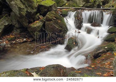 forest waterfall on Silver river  - Jesenik mountains - Czech republic