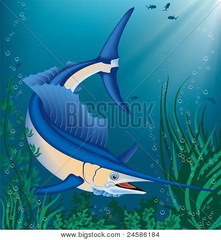 Fish.eps